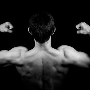 Building Muscle Become Shredded with peptides
